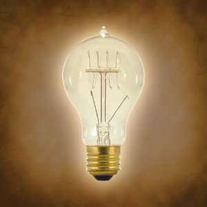 Satco 25w 120v A Shape A19 Antique Carbon Filament Light Bulb
