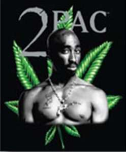 Tupac Leaf Queen Mink Style Plush Blanket