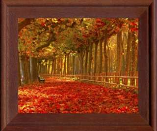 Framed Canvas Picture, Nature, Autumn, Park, Trees, Leaves