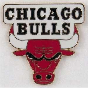 Chicago Bulls NBA Basketball Logo Collectors Pin  Sports