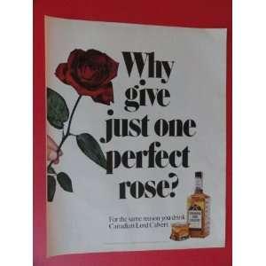 1972 Print Ads (one perfect rose) original vintage Magazine print Art