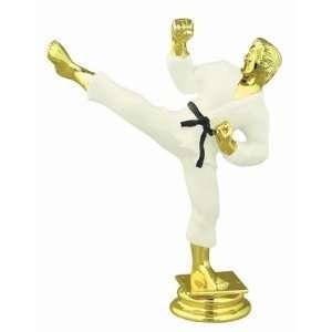 Color 5.25 Male Karate Trophy Figure Trophy Toys & Games