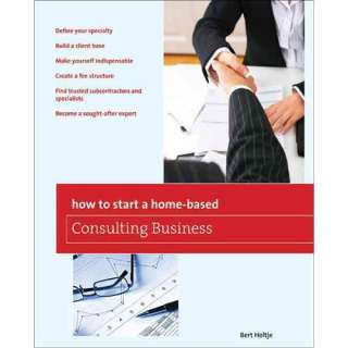 Home Based Consulting Business, Holtje, Bert: Business & Investing