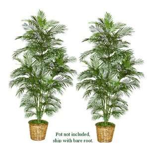 TWO 7 Artificial Areca Palm Trees, with No Pot,: Home