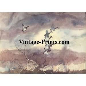 Roy Martell Mason Duck Hunting Print   Flitting Shapes