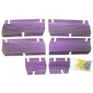 Screen Kit Arctic Cat Candypurple Automotive