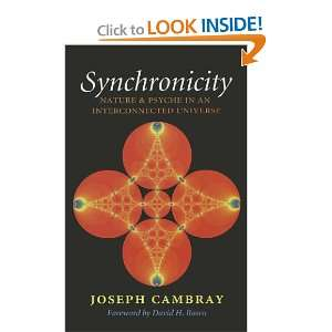 Synchronicity: Nature and Psyche in an Interconnected