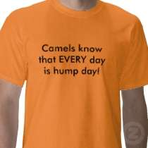 Camels know that EVERY day is hump day! T Shirt by Fountain_Express