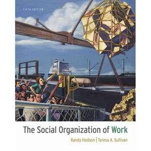 The Social Organization of Work, Hodson, Randy Parenting